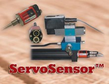 Paw Taw Johns Services Servo Sensor